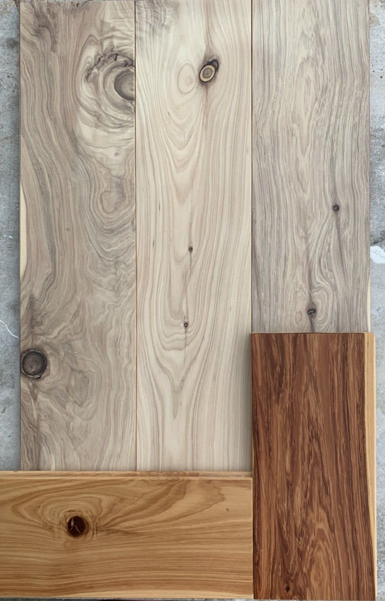 Cypress Pine bleached samples